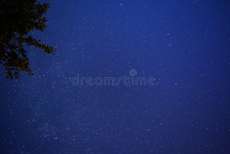 pozyskiwania ilustracyjny błyskawica nocne niebo obraz royalty free