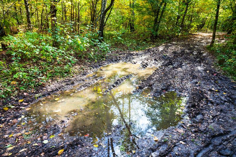pozza profonda sulla strada sporca nella foresta di autunno immagini stock