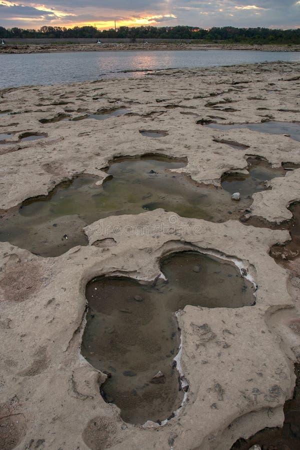 Pozze di marea immagine stock