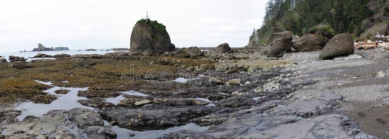 Pozze di marea e formazioni rocciose a bassa marea fotografia stock