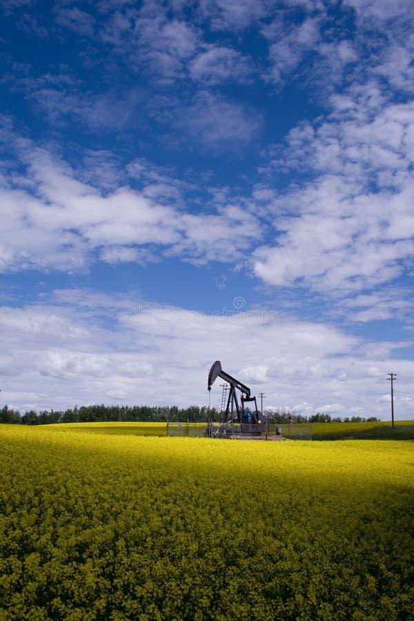 Pozzo di petrolio nel campo giallo immagine stock libera da diritti