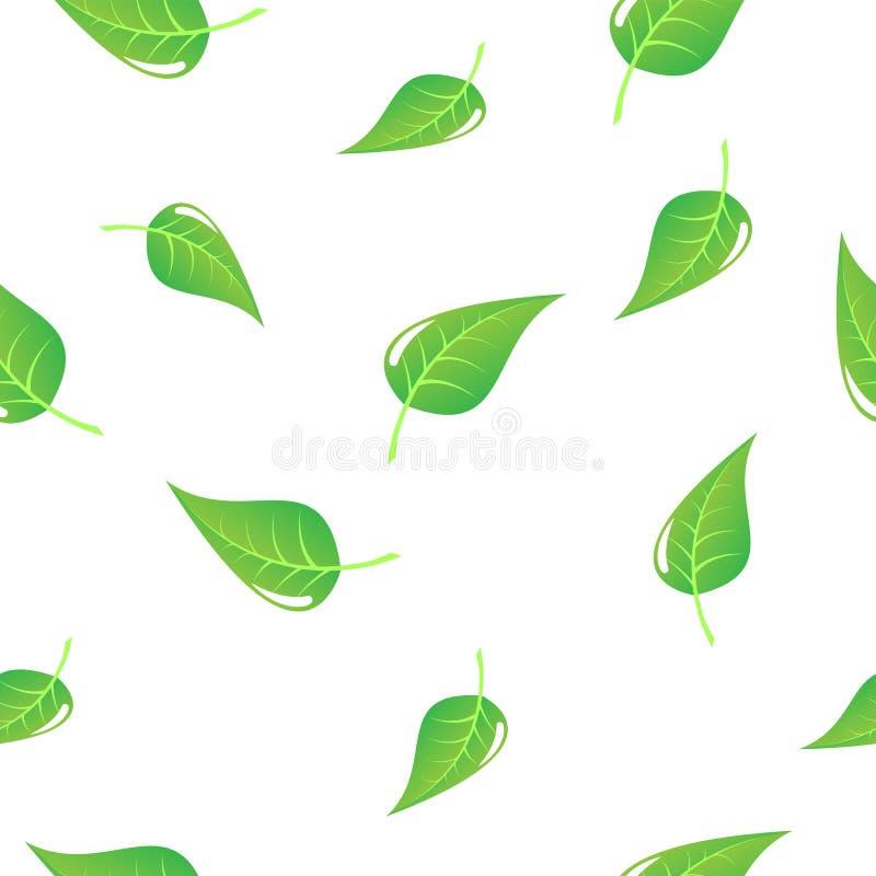 Ppattern zieleni liście obraz stock