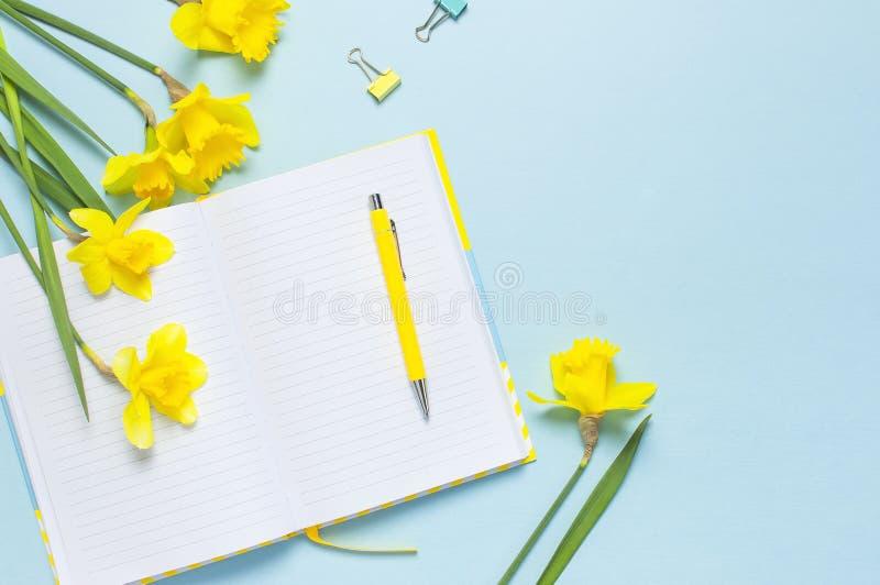 ?ppen tom anteckningsbok, penna, gem, pingstlilja f?r v?rblommap?skliljor p? bl? bakgrund Kvinnligt skrivbord, kontorsskrivbord,  fotografering för bildbyråer