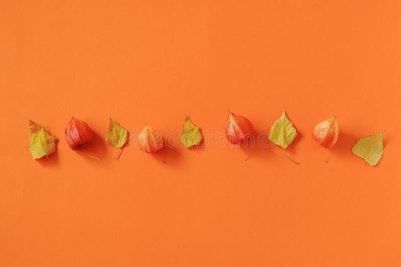 ?ppleh?sten unders?ker torra leafs f?r sammans?ttning som plundrar vasen Ljus herbarium för höstsidor på orange pappers- bakgrund royaltyfri foto