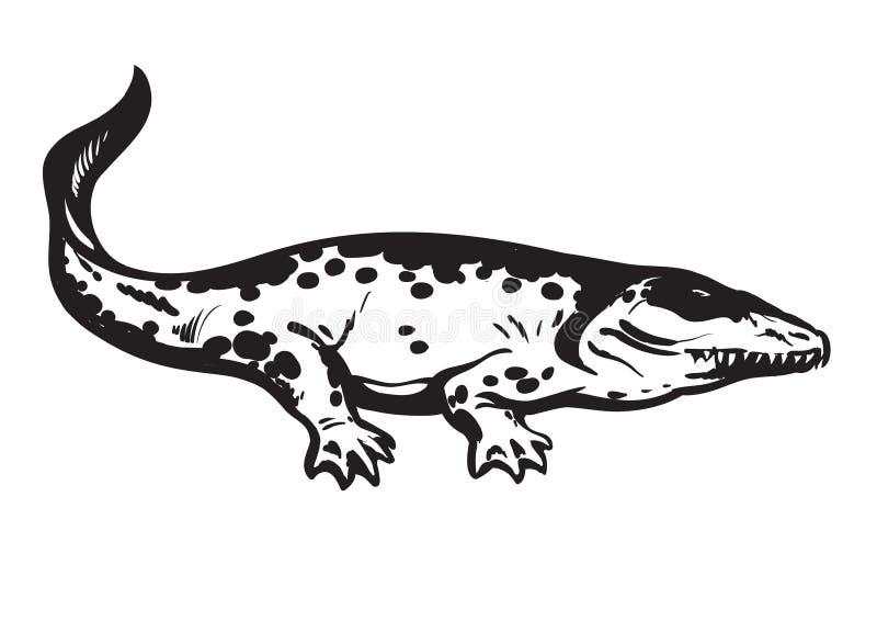 Prähistorische Amphibie, kohlestoffhaltiger tetrapod Stegocephalia Whatcheeriidae Hand gezeichnete vektorabbildung lizenzfreie abbildung