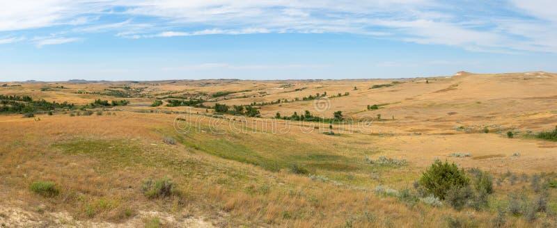 Prärie gräs, baner, panorama som är panorama- royaltyfri bild