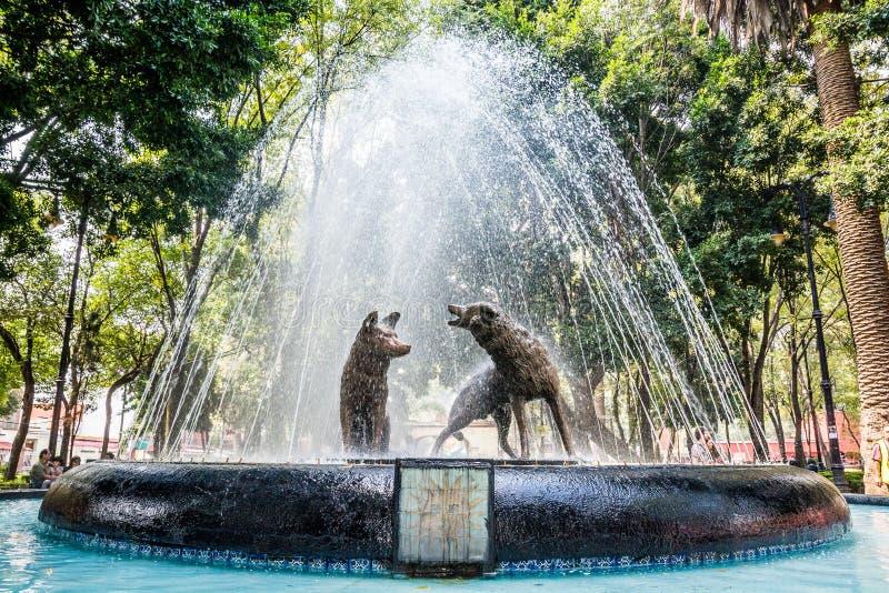 Prärievargspringbrunn i den Coyoacan fjärdedelen, Mexico - stad royaltyfri foto