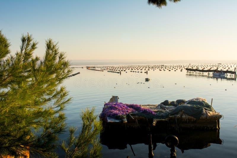 Pråm som täckas av fisken, förtjänar i den Mars pickolaflöjten i Taranto på soluppgång arkivfoto