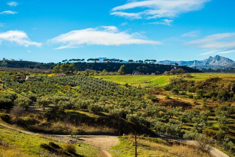 Pré à Ronda, Espagne photo libre de droits