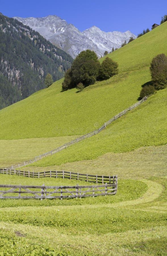 Pré alpestre scénique au Tyrol du sud, Italie photographie stock