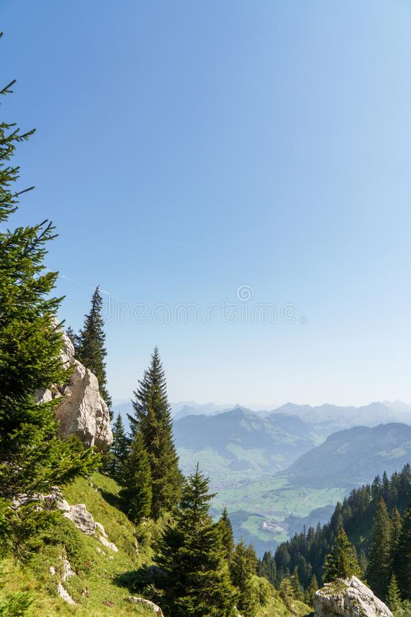 Pré alpin avec l'herbe verte et les fleurs et roches énormes sur l'horizon images stock