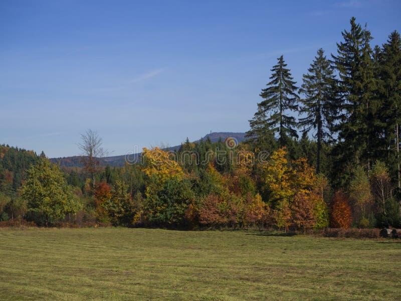 Pré avec la forêt et les arbres colorés d'automne et collines avec le regard images libres de droits