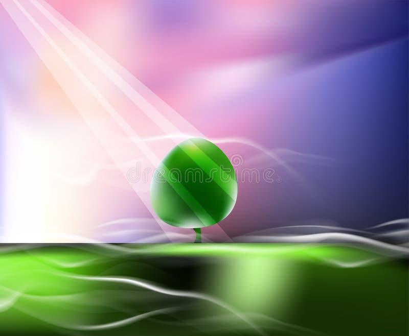 Pré brumeux Les rayons de Sun illuminent l'arbre sur un pré vert illustration stock