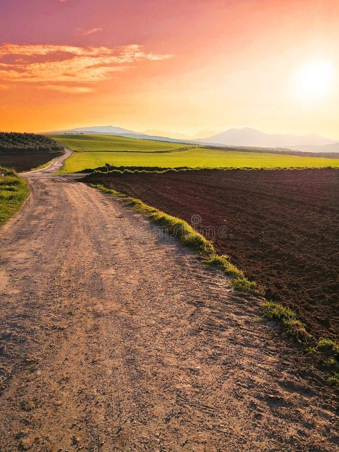 Pré d'herbe au coucher du soleil en Espagne images stock