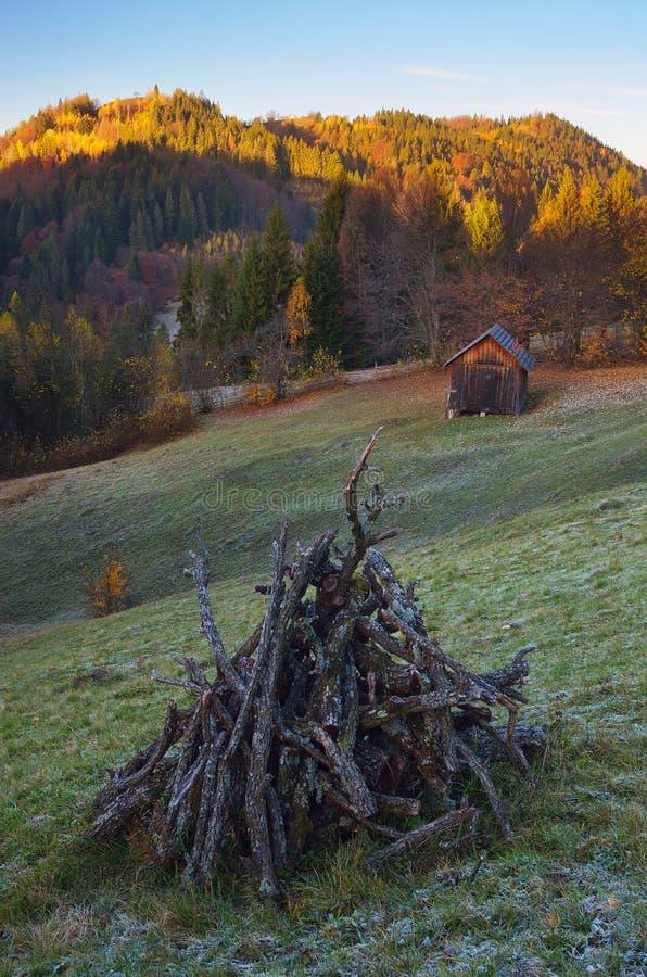 Pré de bois de chauffage photographie stock libre de droits