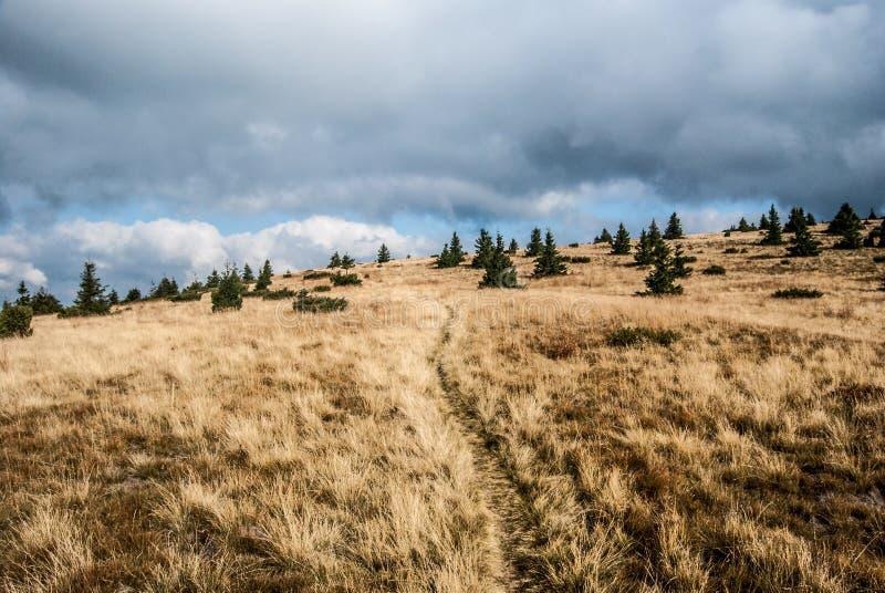 Pré de montagne d'automne avec de petits arbres, sentier de randonnée et ciel bleu avec des nuages en montagnes de Nizke Tatry en image stock
