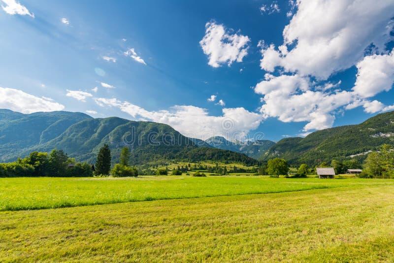 Pré de pâturage en Slovénie Herbe verte, maison de pâturage et alpes de Julian à l'arrière-plan Ciel bleu en été La Slovénie photographie stock