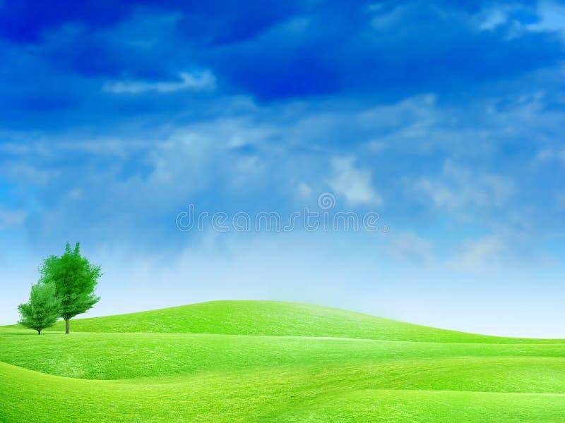 Pré et arbre verts illustration libre de droits