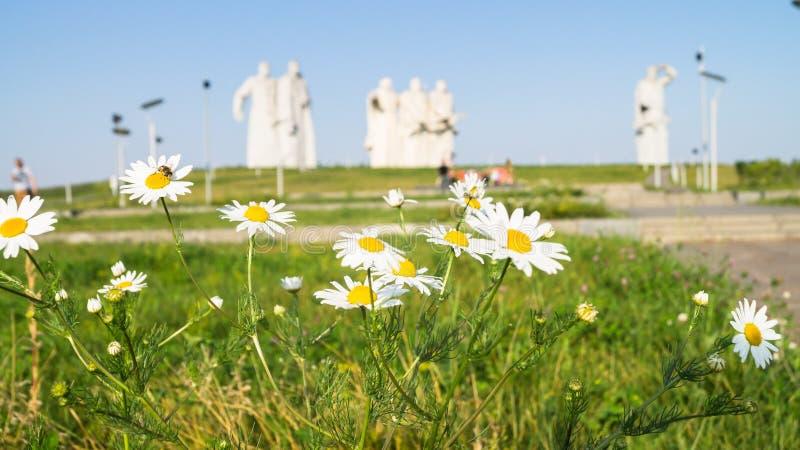 Pré fleurissant devant le mémorial des héros glorieux de la division de Panfilov, Dubosekovo, région de Moscou, Russie images stock