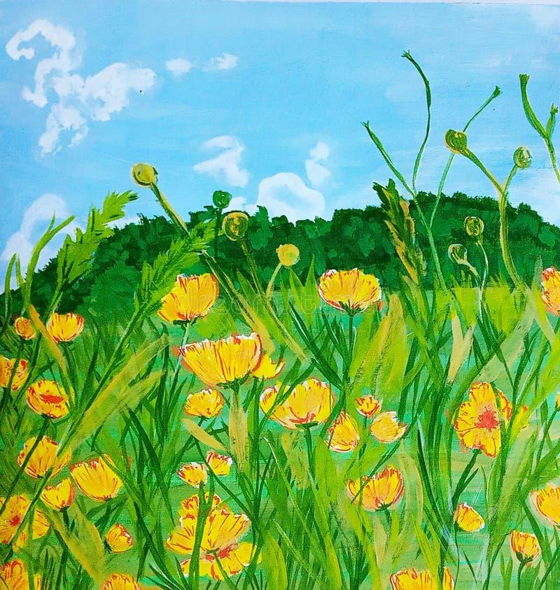 Pré jaune sous le ciel bleu et les nuages blancs photos stock