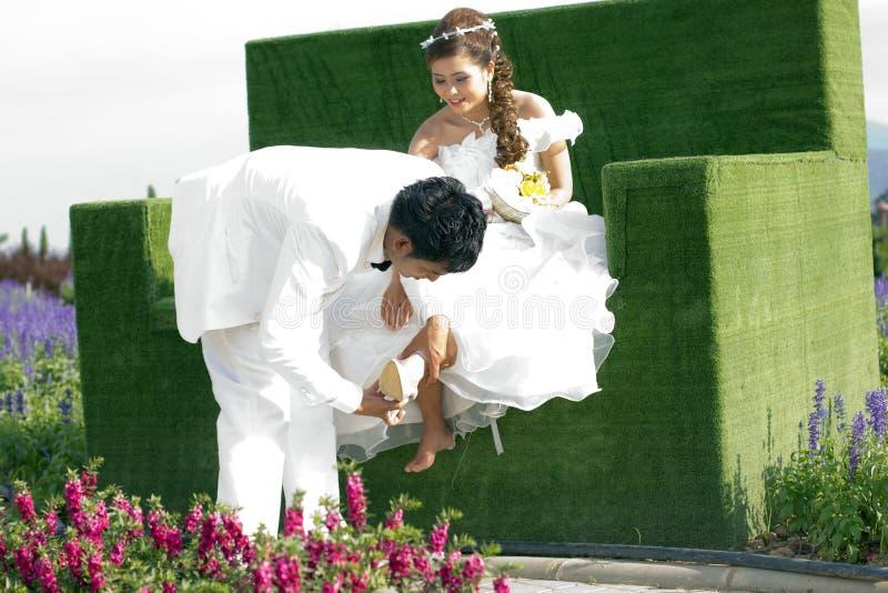 Pré-mariage photos stock