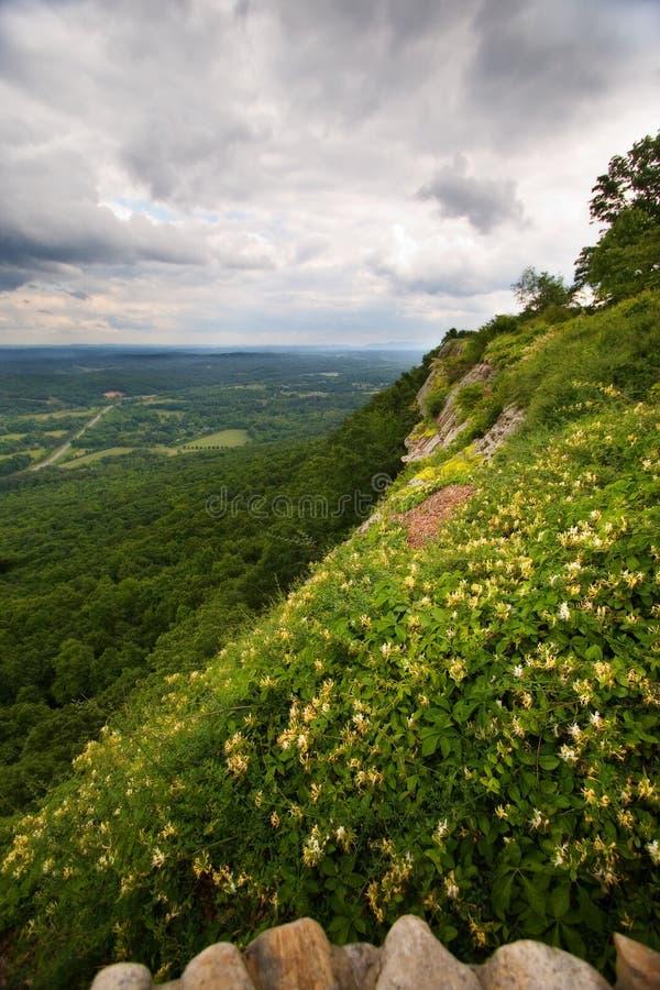 Pré Sunlit comme visualisé de la montagne la Géorgie de surveillance image stock
