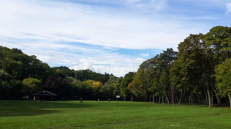 Pré vert au milieu du parc, arbres feuillus, haut parc, Toronto, Canada images libres de droits