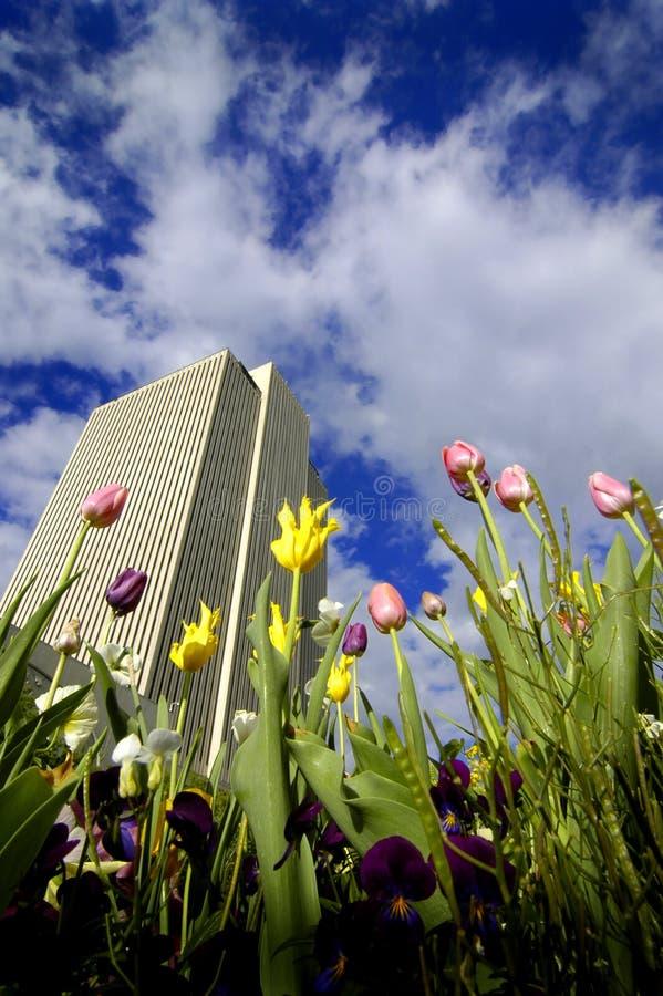 Prédio de escritórios com flores imagens de stock