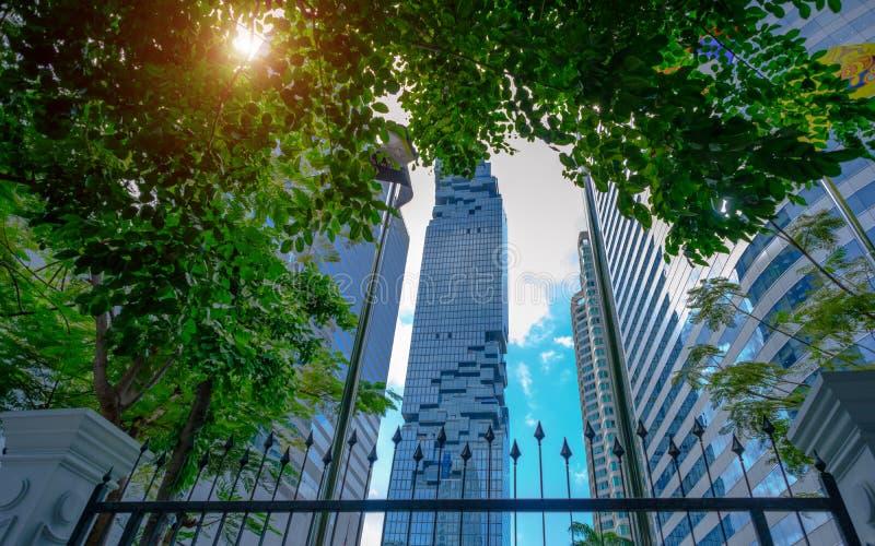 Prédio de escritórios moderno com a árvore verde na área de negócio no golpe imagens de stock royalty free