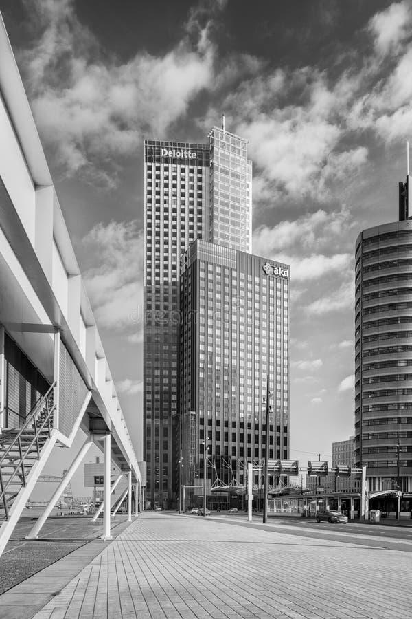 Prédios de escritórios modernos em Kop camionete Zuid, construído em áreas portuárias abandonadas velhas, Rotterdam, Países Baixo imagens de stock royalty free