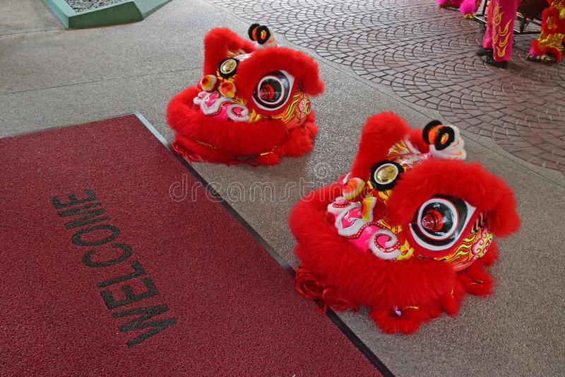 Préparation d'exposition ou de représentation de danse de lion au cours de la période chinoise de nouvelle année photo libre de droits