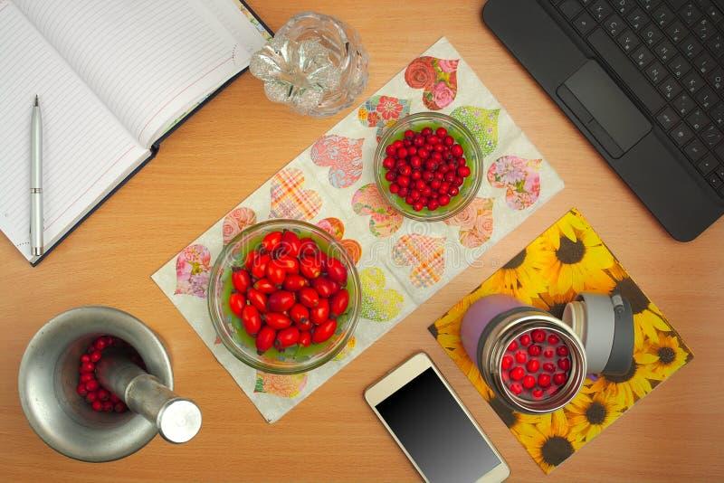 Préparation de chien de teintures rose et d'aubépine, téléphone, ordinateur portable, fleur en cristal image stock
