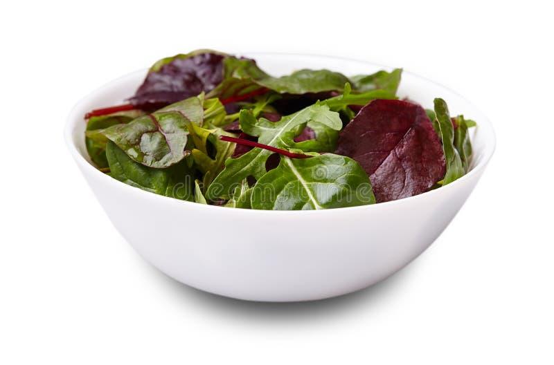 Préparation de salade avec le rucola, le frisee, le radicchio et les épinards sur le Ba blanc image stock