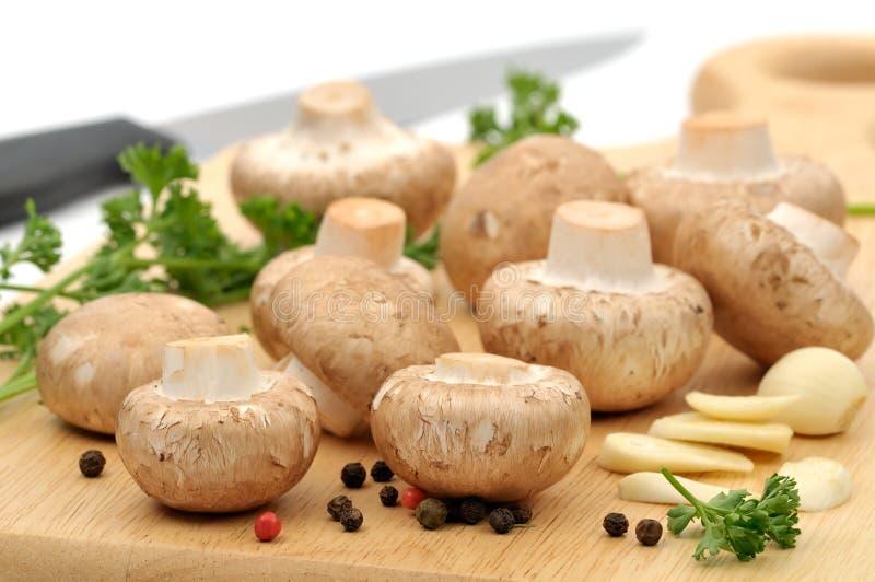 Préparation des champignons de couche photos stock