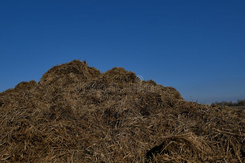 Préparez le sol pour la plantation Fond de texture d'engrais organique et de sol Vue supérieure image libre de droits