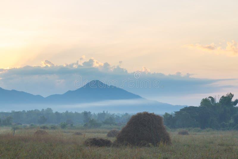 Prés et montagnes pendant le matin image stock