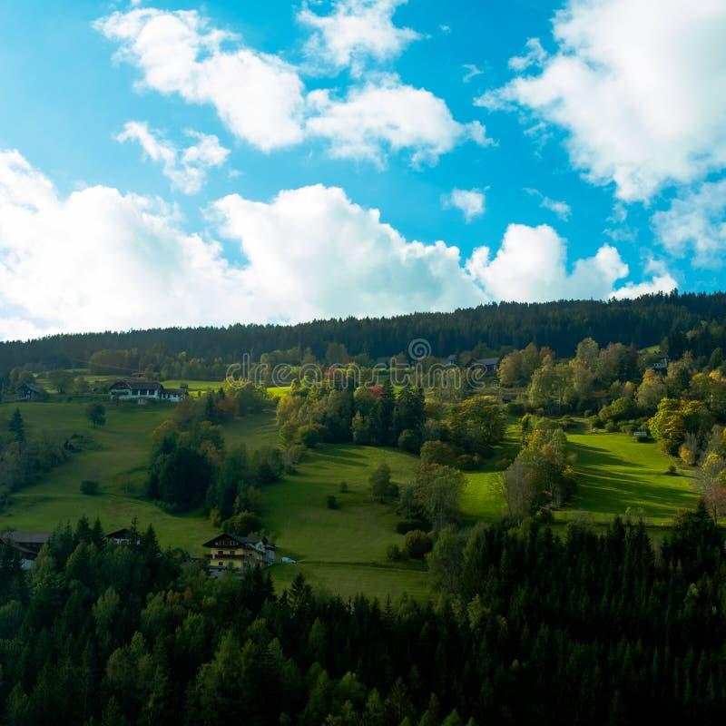 Prés vert clair et ciel bleu photo libre de droits