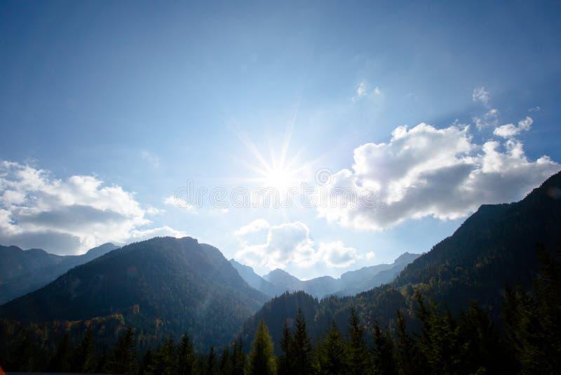 Prés vert clair et ciel bleu photographie stock