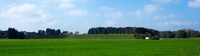 Prés vert clair et ciel bleu images libres de droits