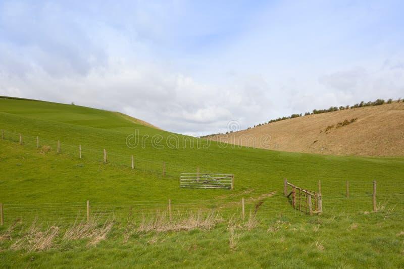 Prés verts dans Yorkshire photo libre de droits