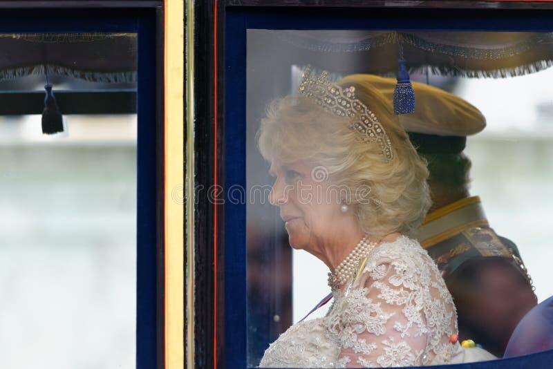 Príncipe Charles y Camila fotografía de archivo libre de regalías