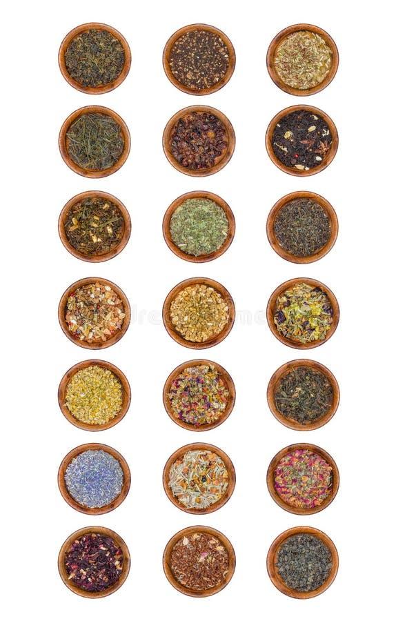 21 próbka herbaciani liście fotografia royalty free