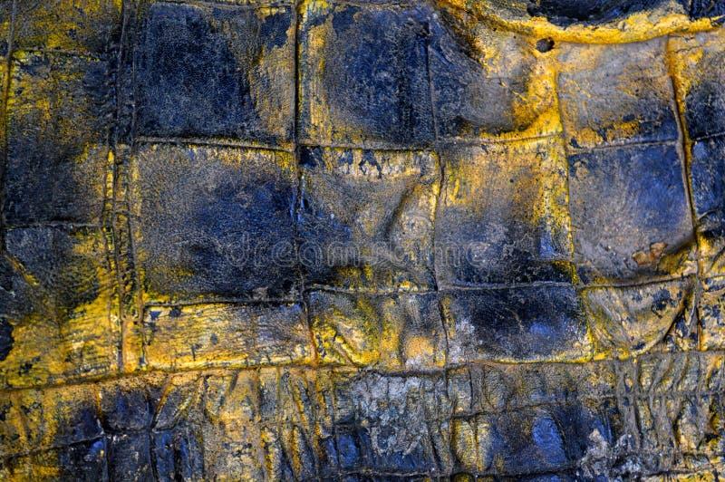 Próbka rocznika tekstura prawdziwej skóry czerń i żółty kolor Materiał zwierzęcy początek Zako?czenie obraz stock