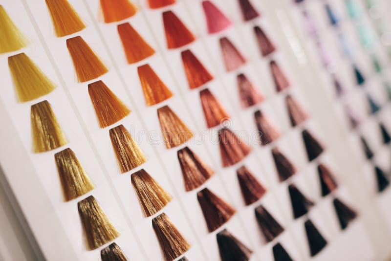 Próbki włosy z różnymi cieniami włosiany kolor zdjęcie royalty free