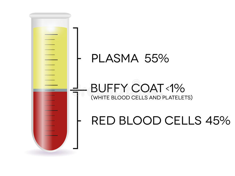 Próbna tubka z komórkami krwi royalty ilustracja