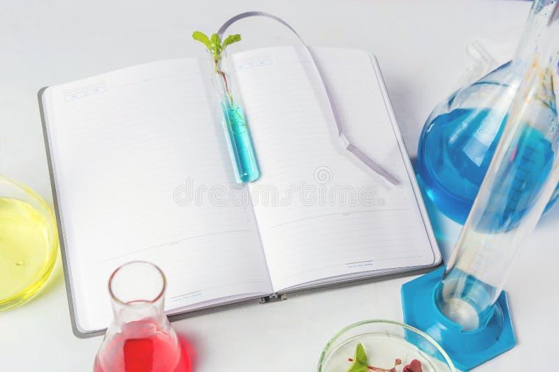 Próbna tubka z liśćmi na laptopie który kłama na białym stole W pobliżu są kolby z barwionymi cieczami Backgraund obrazy stock
