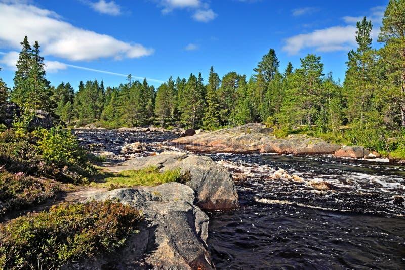 Próg Morskoj na rzecznym Pongoma, Północny Karelia, Rosja zdjęcie stock