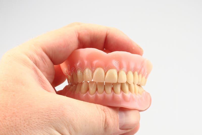 Prótese dos dentes na mão humana imagem de stock