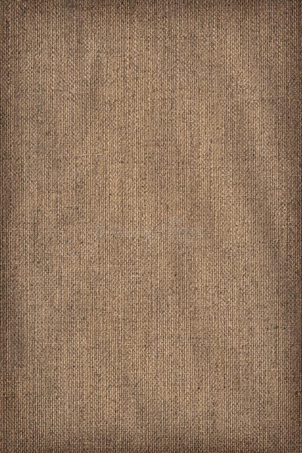 Prövkopia för textur för Grunge för linneDuck Canvas Coarse Grain Crumpled karaktärsteckning royaltyfri bild