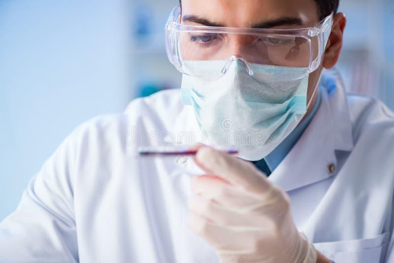 Prövkopiorna för blod för provning för labbassistent i sjukhus arkivbild